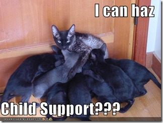 funny-pictures-child-support-cat